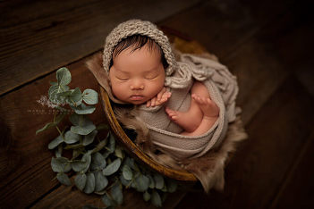 marie grantham photography newborn photographer las vegas woodsy newborn pictures with plants