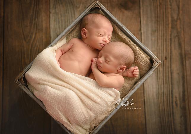 twins newborn portraits las vegas