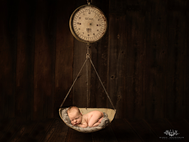 newborn baby scale photography prop