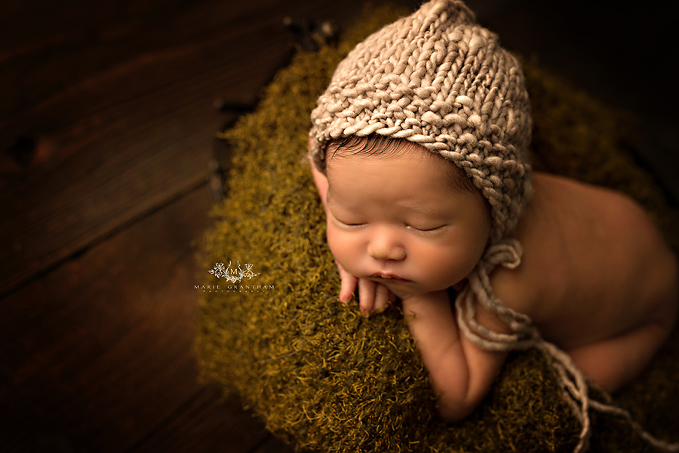 newborn photography henderson