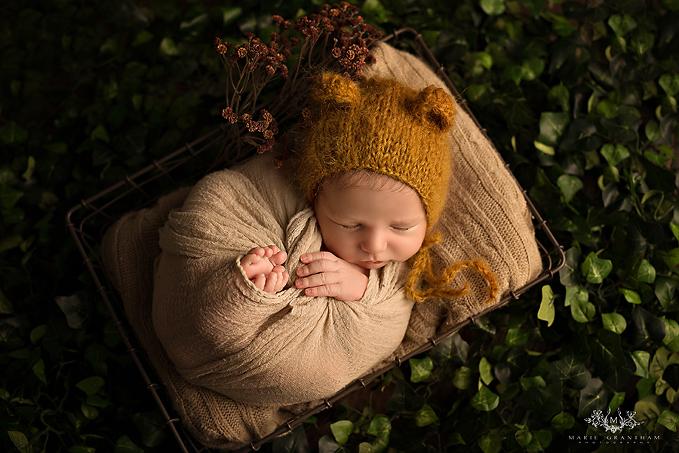 marie grantham photography newborn photographer