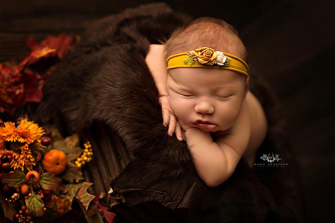 newborn portraits henderson