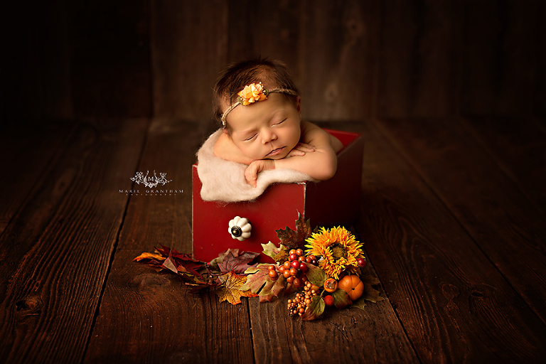 Baby Photographers Near Me   Marie Grantham Photography