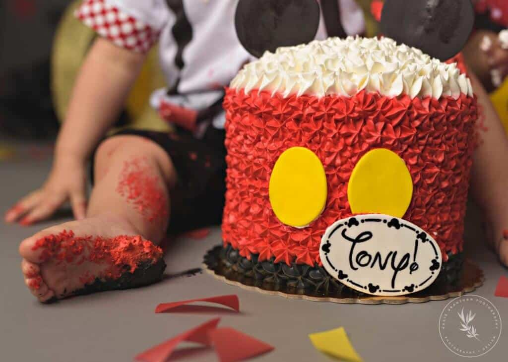 Tremendous Classic Mickey Mouse Cake Smash Marie Grantham Photography Funny Birthday Cards Online Fluifree Goldxyz